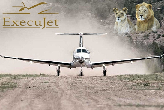 ExecuJet Tours & Safaris