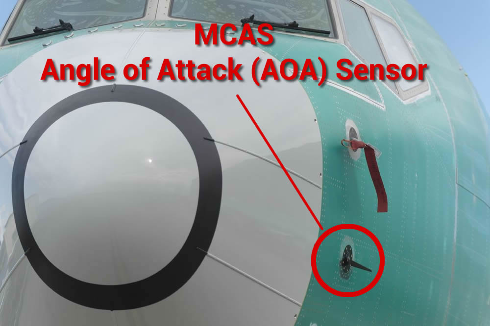 Bird strike on Ethiopian 737MAX