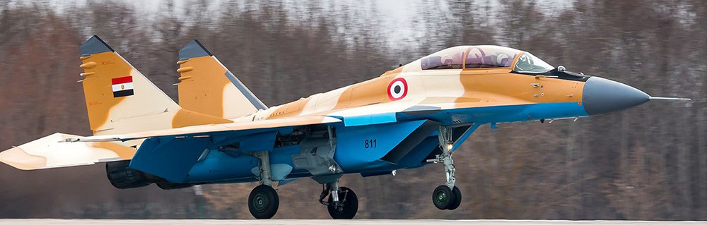 Egyptian MiG-29 fighter jet crashes